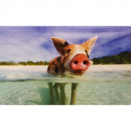 Schweine am Strand (14 cm 9 cm)